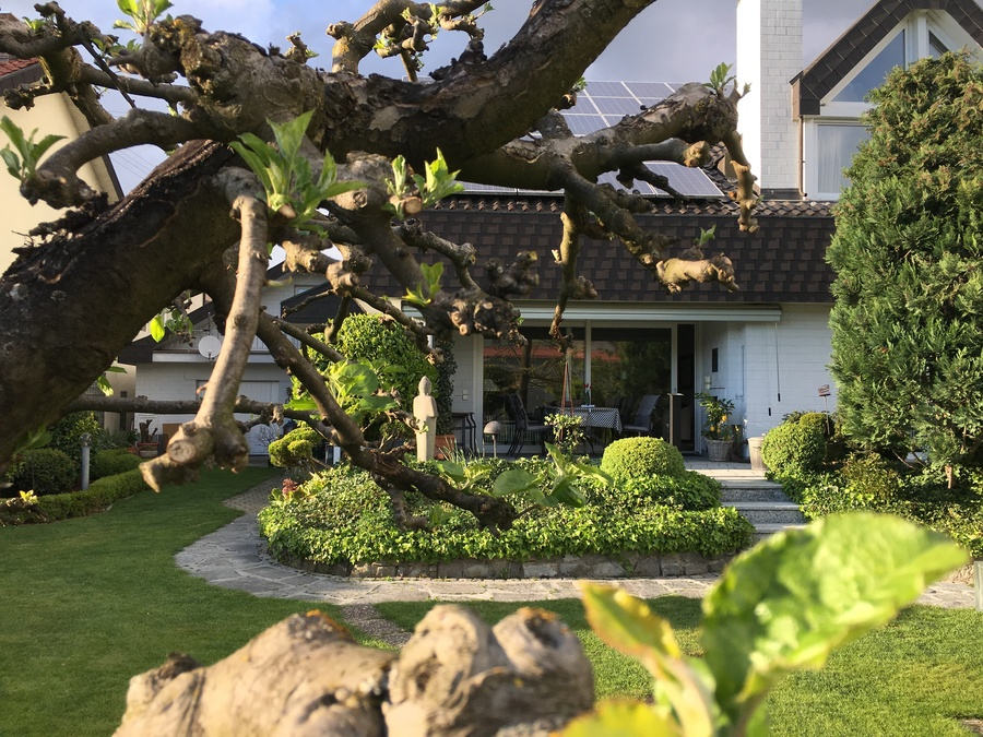 Heldes Ferienwohnungen - Garten