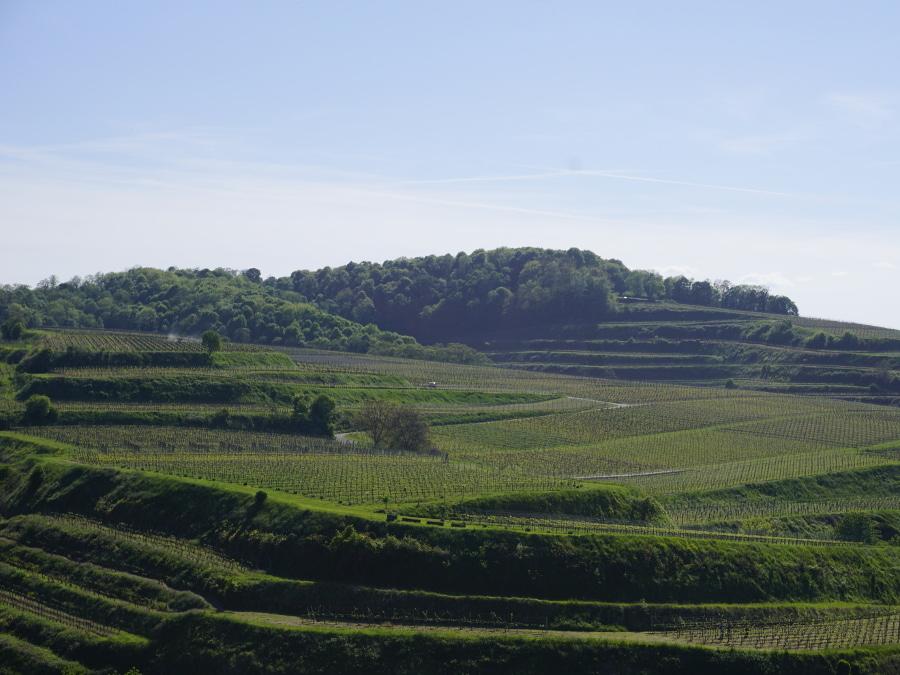 Heldes Ferienwohnungen - Blick auf den Haberberg